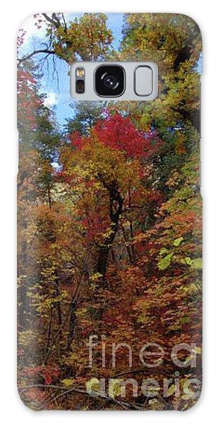 Autumn In Sedona Galaxy Case