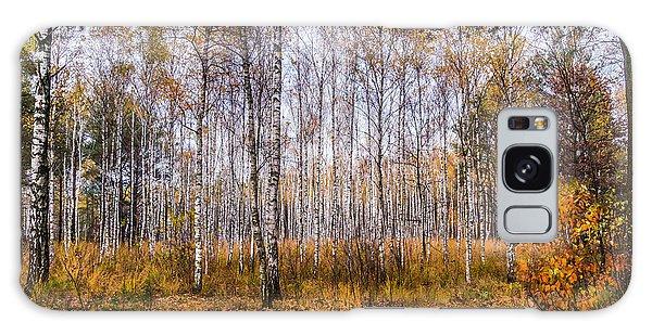 Autumn In The Birch Grove Galaxy Case
