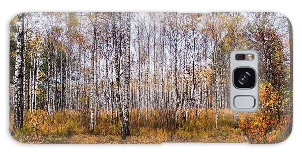 Autumn In The Birch Grove Galaxy Case