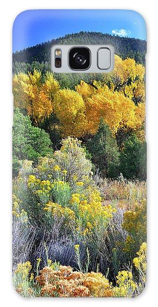Autumn In The Canyon Galaxy Case