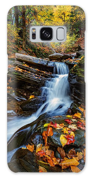 Autumn In The Catskills Galaxy Case