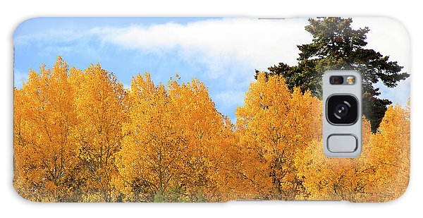 Autumn In The Owyhee Mountains Galaxy Case