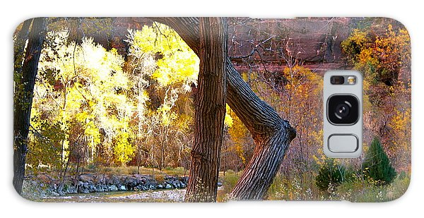 Autumn In Zion Galaxy Case