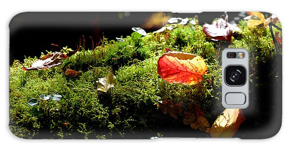 Autumn Jewels For A Mossy Log Galaxy Case by Tanya Searcy