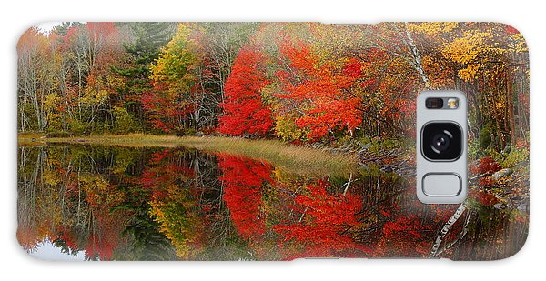 Autumn Lake, Nova Scotia Galaxy Case