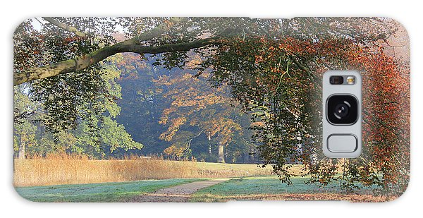 Autumn Landscape With Colored Trees In Park, Netherlands Galaxy Case