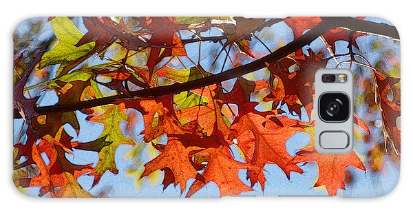 Autumn Leaves 16 Galaxy Case