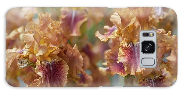 Autumn Leaves Irises In Garden Galaxy Case
