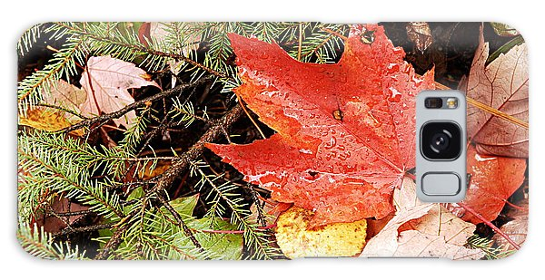 Autumn Leaves Galaxy Case by Larry Ricker