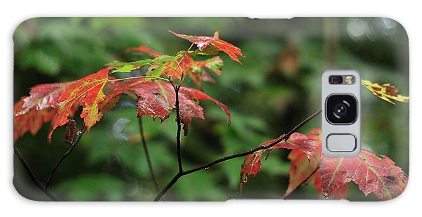 Autumn Leaves In The Rain Galaxy Case