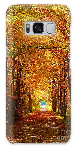 Autumn Light And Leaf Painting Galaxy Case