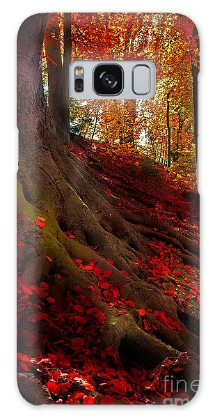 Autumn Light Galaxy Case