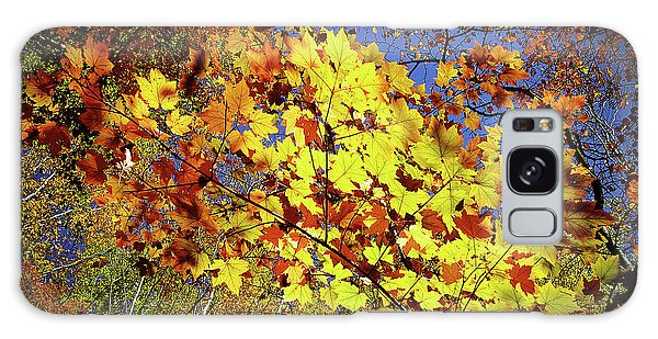 Autumn Light Galaxy Case by Tatsuya Atarashi