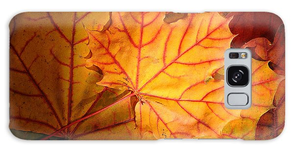 Autumn Maple Leaves Galaxy Case