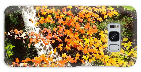 Autumn Maple Galaxy Case