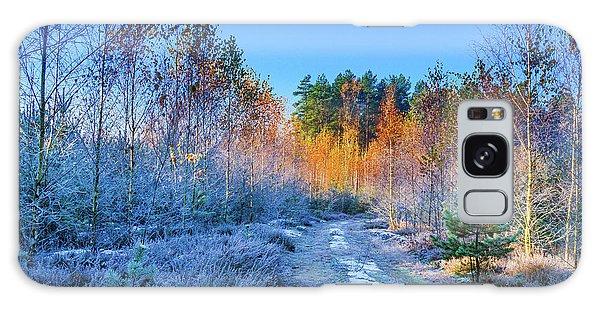 Autumn Meets Winter Galaxy Case