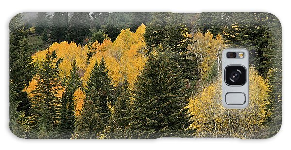Autumn Mist, Owyhee Mountains Galaxy Case