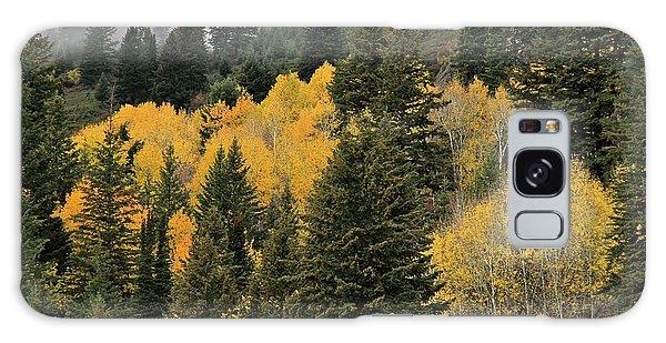 Autumn Mist, Owyhee Mountains Galaxy Case