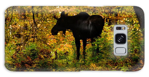 Autumn Moose Galaxy Case by Brent L Ander