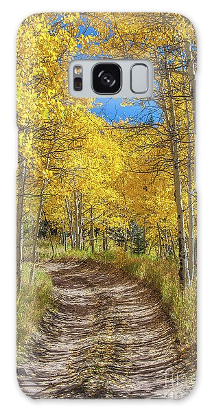 Autumn On Medano Pass Galaxy Case
