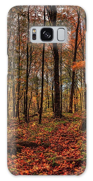 Autumn On The Ice Age Trail Galaxy Case