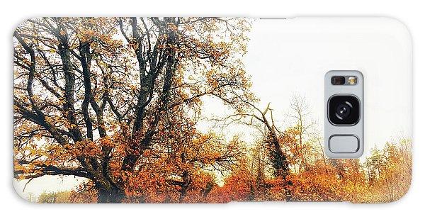 Autumn On White Galaxy Case