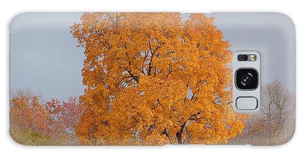 Autumn Over Prettyboy Galaxy Case