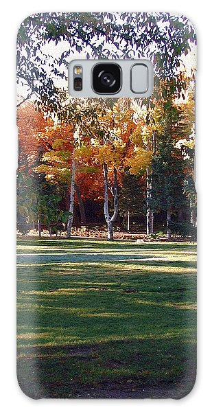 Autumn Park Galaxy Case
