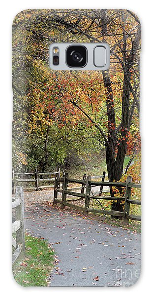 Autumn Path In Park In Maryland Galaxy Case