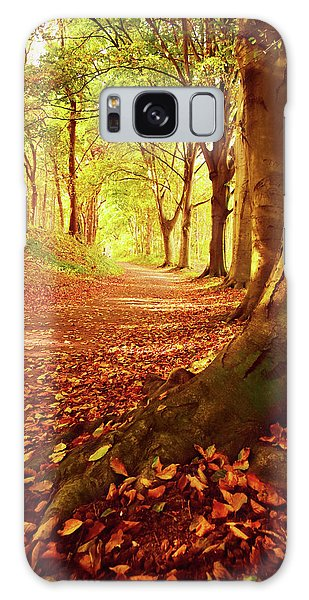 Autumn Path Galaxy Case