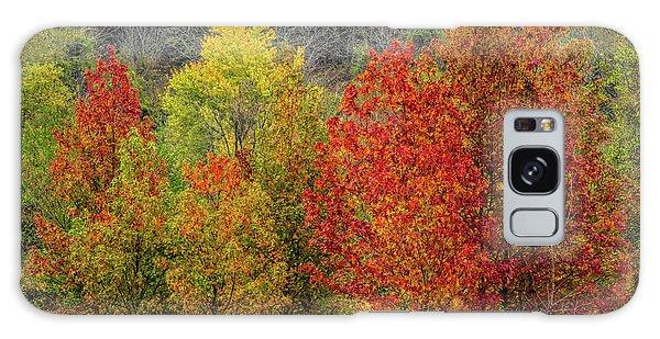Autumn Galaxy Case