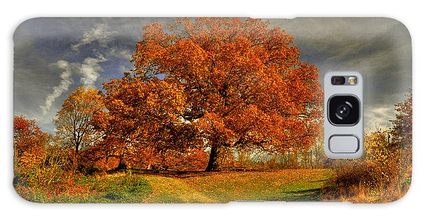 Picnic Table Galaxy Case - Autumn Picnic On The Hill by Lois Bryan