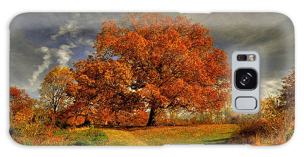 Autumn Picnic On The Hill Galaxy Case