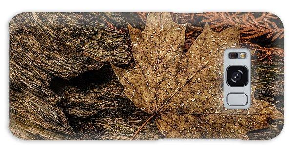 Autumn Rain Galaxy Case