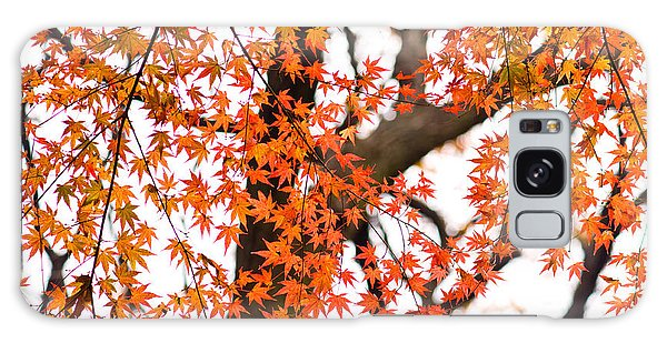Autumn Red Leaves On A Tree   Galaxy Case