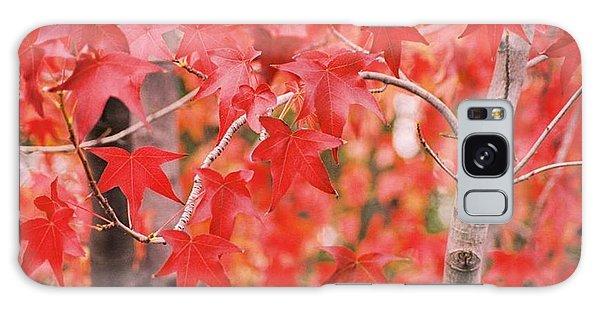 Autumn Reds Galaxy Case