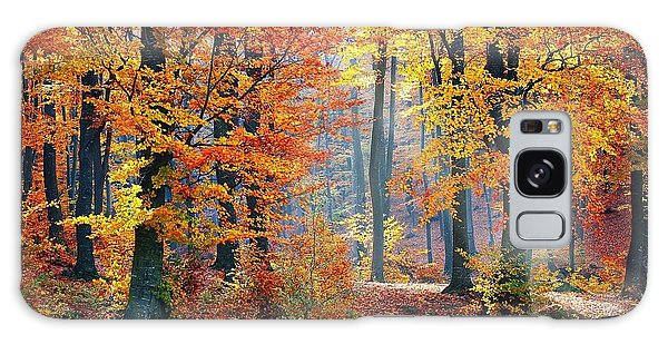 Autumn Splendour Galaxy Case