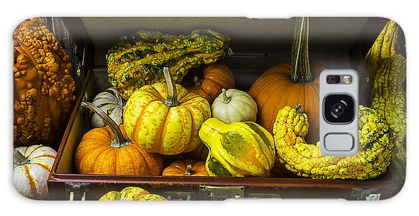 Gourd Galaxy Case - Autumn Suitcase by Garry Gay