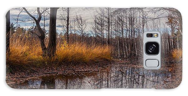 Autumn Swamp Galaxy Case