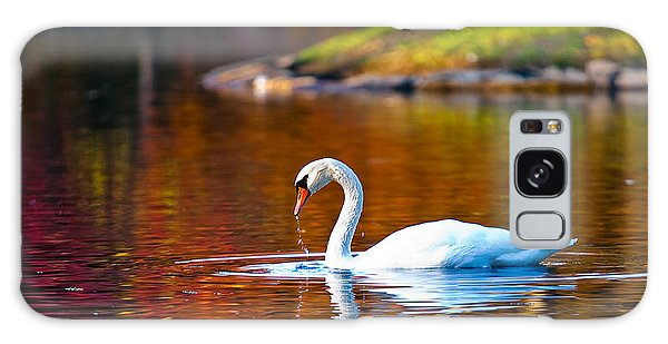 Autumn Swan Lake Galaxy Case