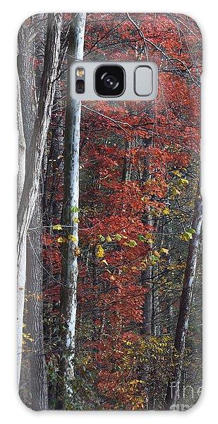Autumn Trees 8261c Galaxy Case