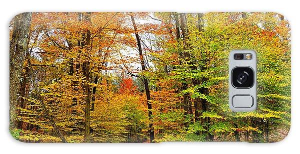 Wellsboro Galaxy Case - Autumn Trees by Krystal Billett