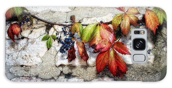 Autumn Vines Galaxy Case