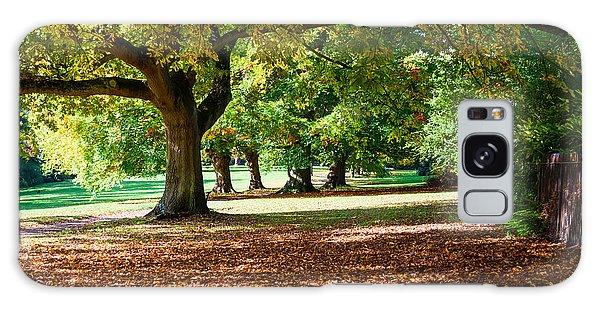 Autumn Walk In The Park Galaxy Case