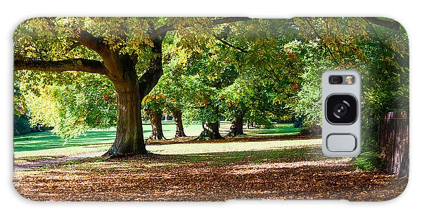 Autumn Walk In The Park Galaxy Case by Colin Rayner