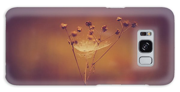 Autumn Web Galaxy Case