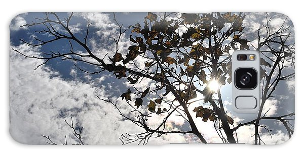 Autumn Yellow Back-lit Tree Branch Galaxy Case