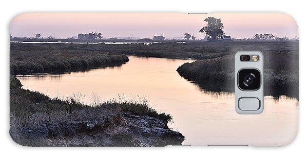 Aveiro Wetlands Galaxy Case by Marek Stepan