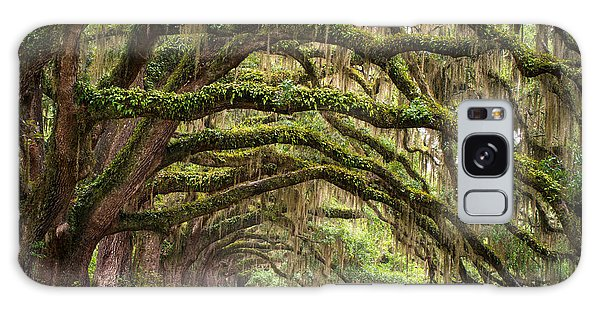 Horizontal Galaxy Case - Avenue Of Oaks - Charleston Sc Plantation Live Oak Trees Forest Landscape by Dave Allen