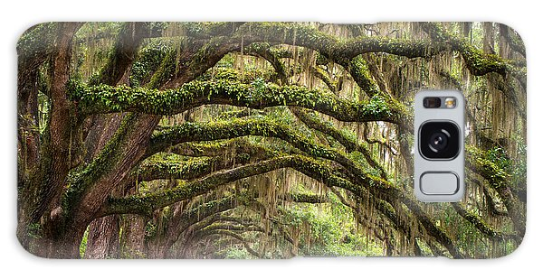 Avenue Of Oaks - Charleston Sc Plantation Live Oak Trees Forest Landscape Galaxy Case